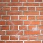 spp web brickwork 19